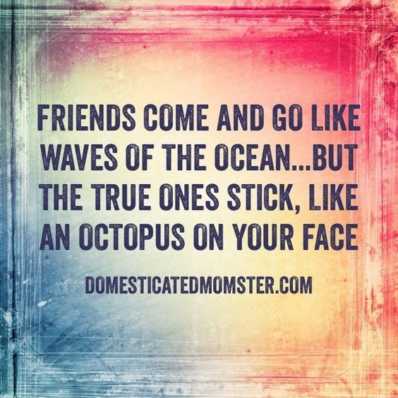 Happy Quotes About Friendship Enchanting 35 Best Friendship Quotes  Life Quotes & Humor