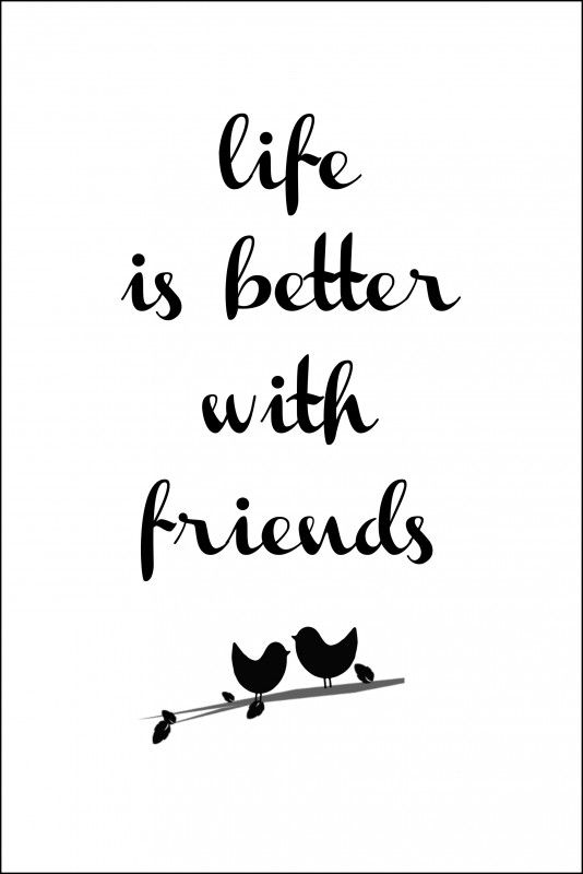 Photo Quotes About Friendship Unique 35 Best Friendship Quotes  Life Quotes & Humor