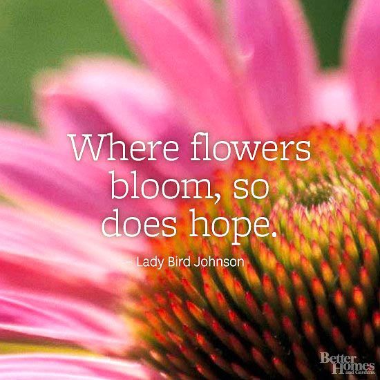 26 flower quotes life quotes humor 26 flower quotes mightylinksfo