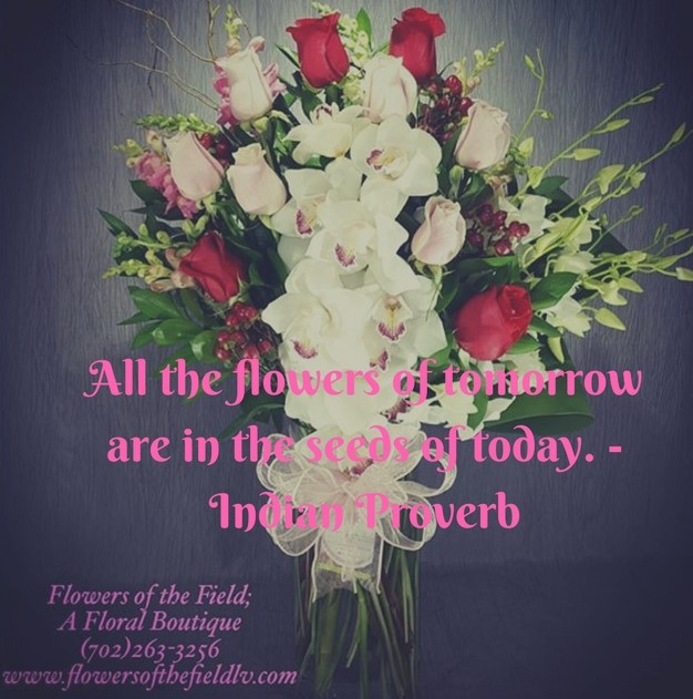 Beautiful Flowers Images With Friendship Quotes: Life Quotes & Humor