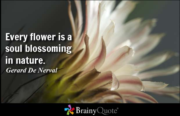 26 Flower Quotes Life Quotes Humor