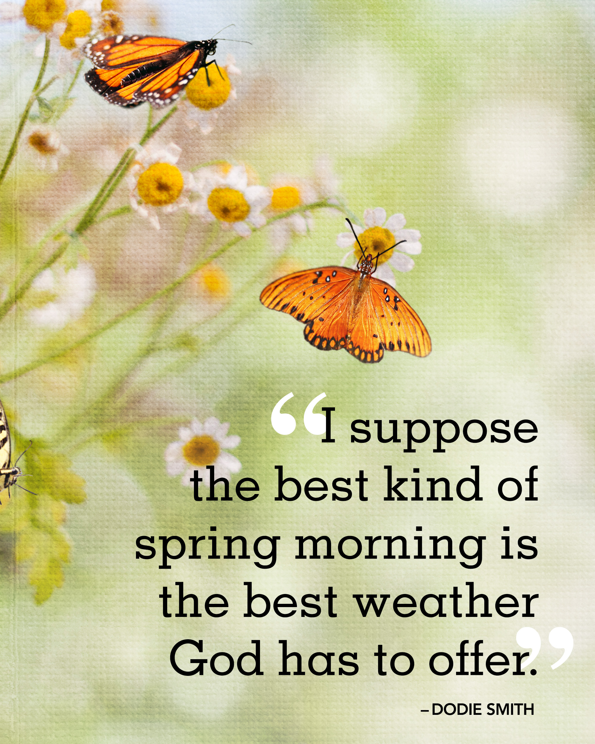 Favorite Quotes About Life 26 Spring Quotes  Life Quotes & Humor