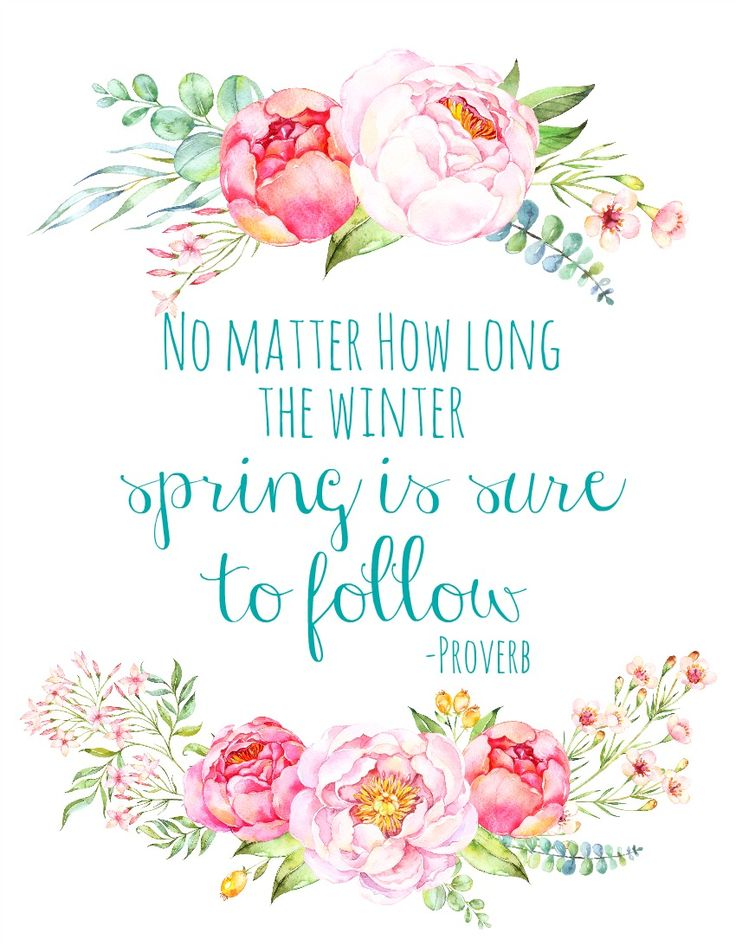 Inspirational Spring Quotes And Sayings: Life Quotes & Humor