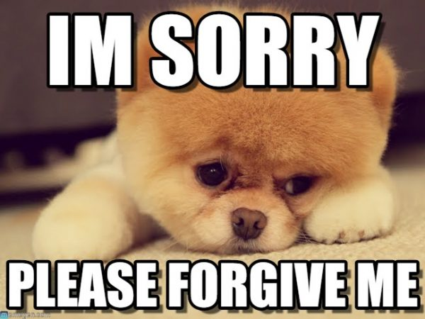 Best 21 I'm Sorry Memes – SO LIFE QUOTES