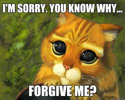 Best 21 im sorry memes4 best 21 i'm sorry memes life quotes & humor