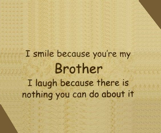 Top 29 Cute Brother Quotes From Sister So Life Quotes