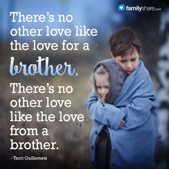 Top 29 Cute Brother Quotes From Sister Life Quotes Humor